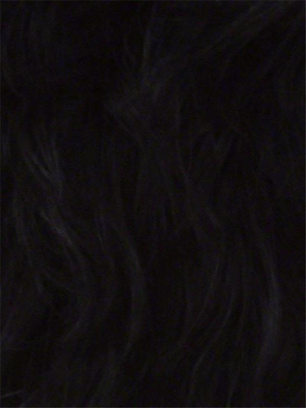 100 percent human hair wig braided wigs